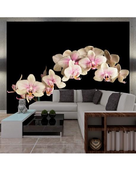 Stenska poslikava Blooming orchid
