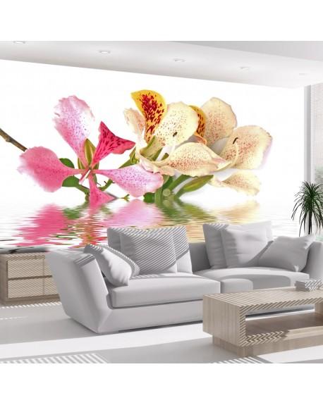Stenska poslikava Tropical flowers orchid tree (bauhinia)