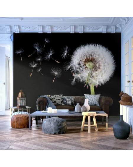 Stenska poslikava - Wind and dandelion