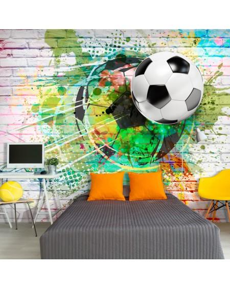 Stenska poslikava Colourful Sport