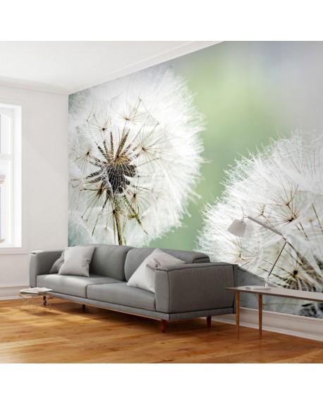 Stenska poslikava Two dandelions