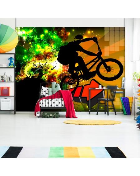 Stenska poslikava Bicycle Tricks