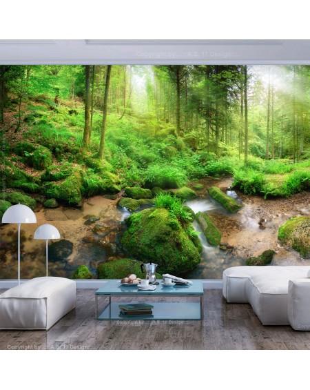 Stenska poslikava Humid Forest