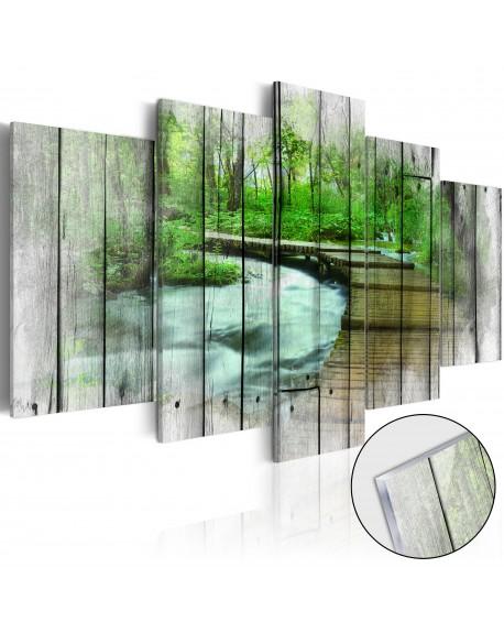 Akrilni tisk Forest of Secrets [Glass]
