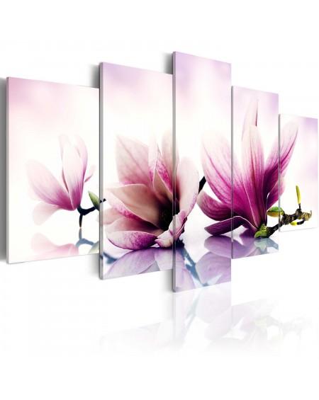 Slika Pink flowers magnolias