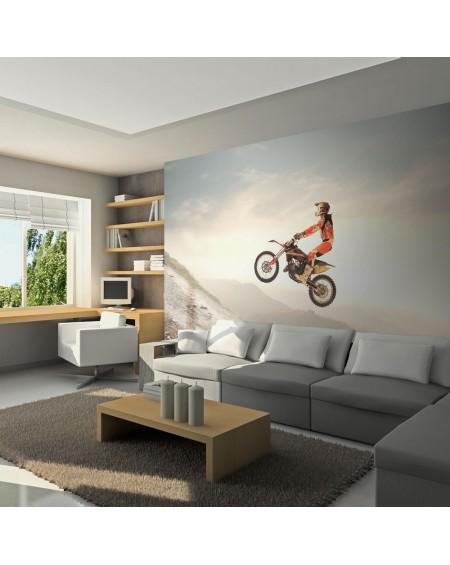 Stenska poslikava - Motor sport