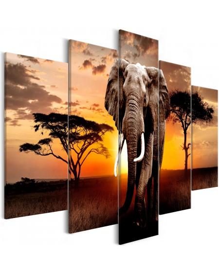 Slika Wandering Elephant (5 Parts) Wide
