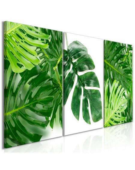 Slika Palm Leaves (3 Parts)