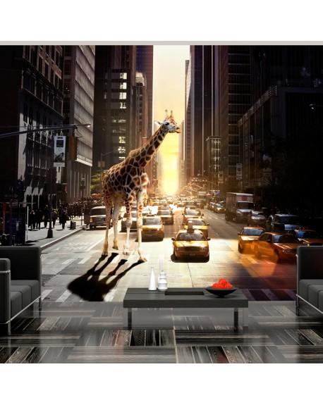 Stenska poslikava Giraffe in the big city