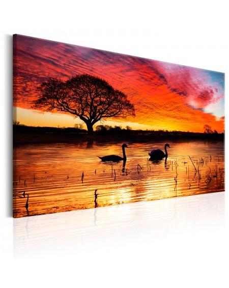 Slika Swan Lake