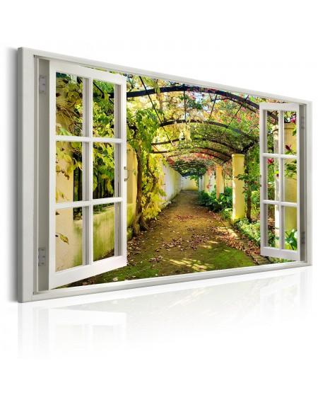 Slika Window View on Pergola