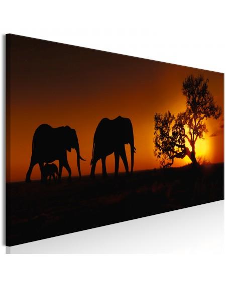 Slika Elephant Family (Orange)