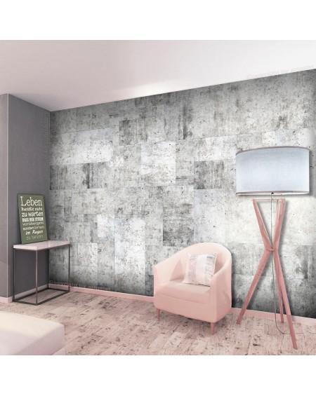 Stenska poslikava Concrete Grey City