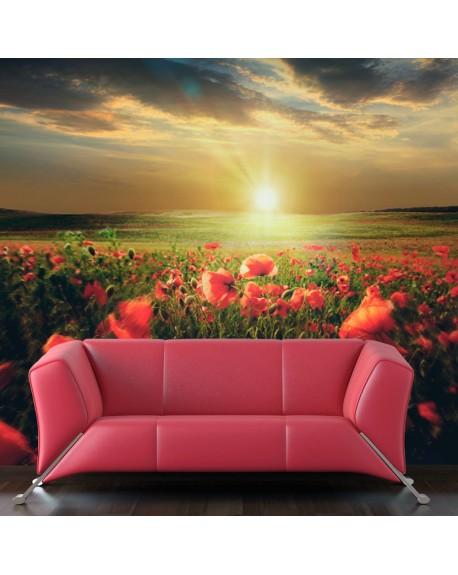 Stenska poslikava Morning on the poppy meadow