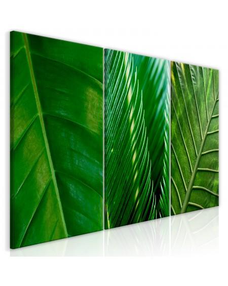Slika Leaves (Collection)