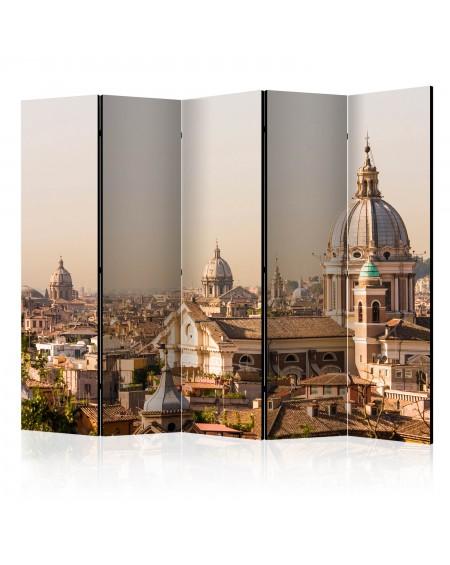 Španska stena Rome birds eye view II [Room Dividers]