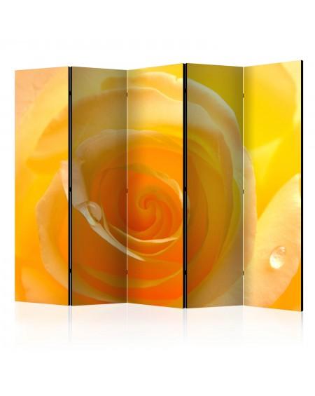 Španska stena Yellow rose II [Room Dividers]