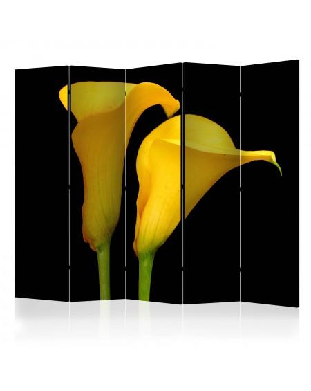 Španska stena Two yellow calla flowers on a black background II [Room Dividers]