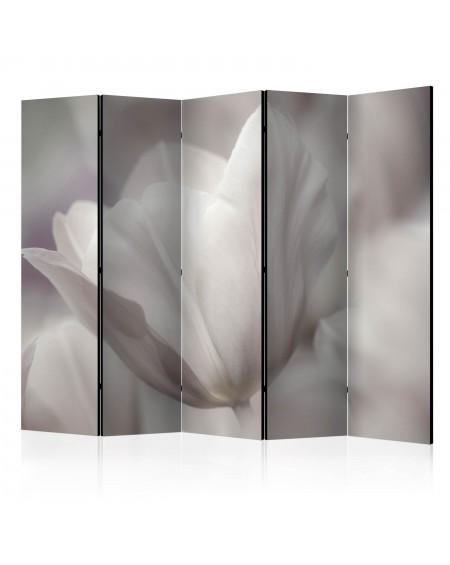 Španska stena Tulip black and white photo II [Room Dividers]