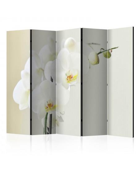 Španska stena White orchid II [Room Dividers]
