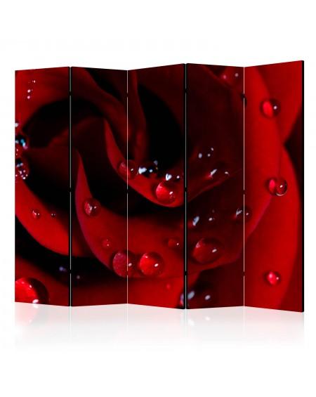 Španska stena Red rose with water drops II [Room Dividers]