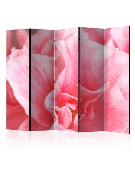 Španska stena Pink azalea flowers II [Room Dividers]