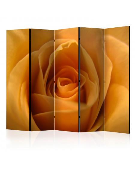 Španska stena Yellow rose – a symbol of friendship II [Room Dividers]