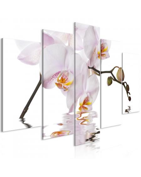 Slika Delightful Orchid (5 Parts) Wide
