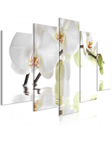 Slika Wonderful Orchid (5 Parts) Wide