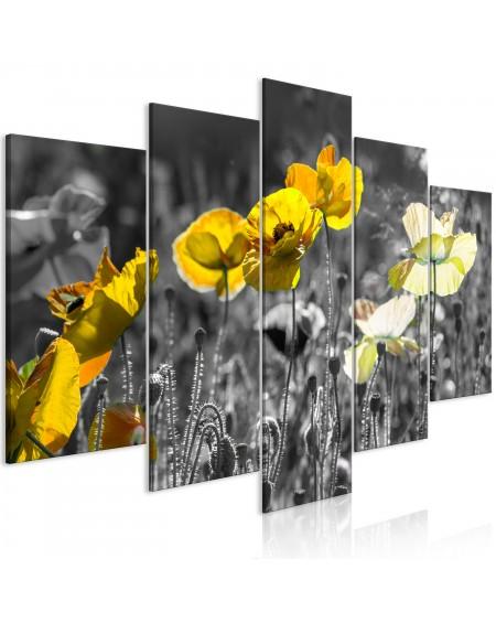 Slika Yellow Poppies (5 Parts) Wide