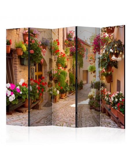 Španska stena The Alley in Spello (Italy) II [Room Dividers]