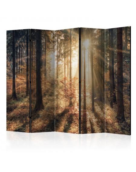 Španska stena Autumnal Forest II [Room Dividers]