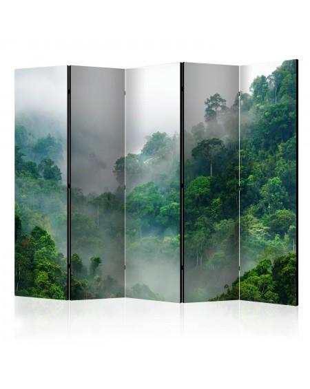 Španska stena Morning Fog II [Room Dividers]