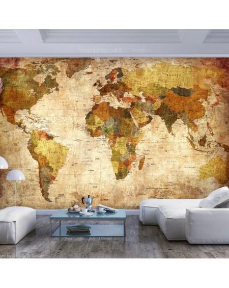 Samolepilna fototapeta Old World Map