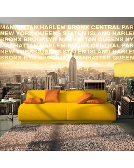 Stenska poslikava Neighborhoods of New York