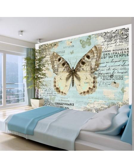 Stenska poslikava Postcard with butterfly
