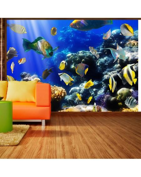 Stenska poslikava Underwater adventure