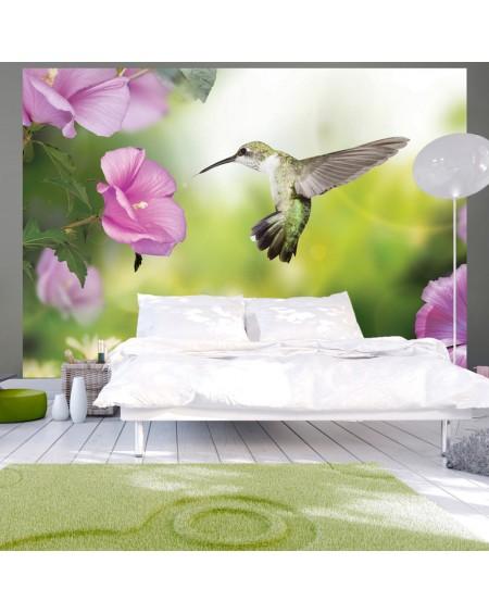 Stenska poslikava Hummingbird