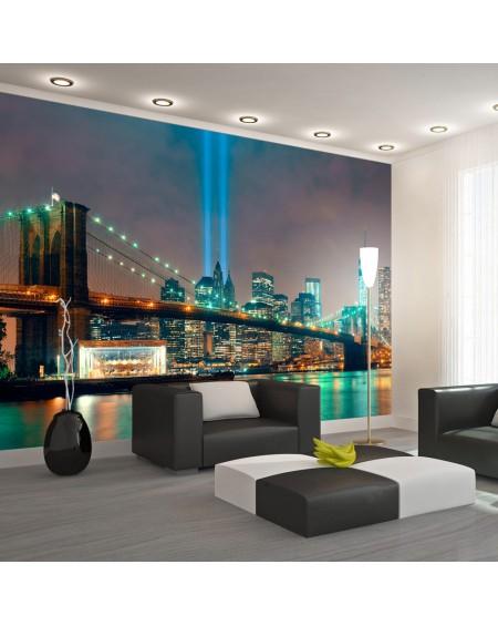 Stenska poslikava Light of NYC